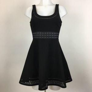 Elizabeth and James laser cut fit and flair dress